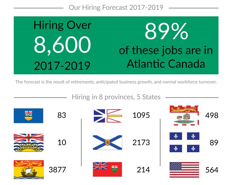 Our Hiring forecast 2017-2019