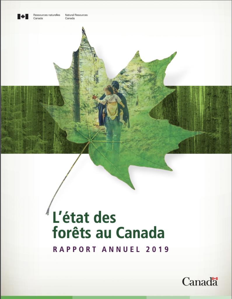L'État des forêts du Canada en 2020